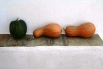 Tao's Center, Paros, Greece, pumpkins